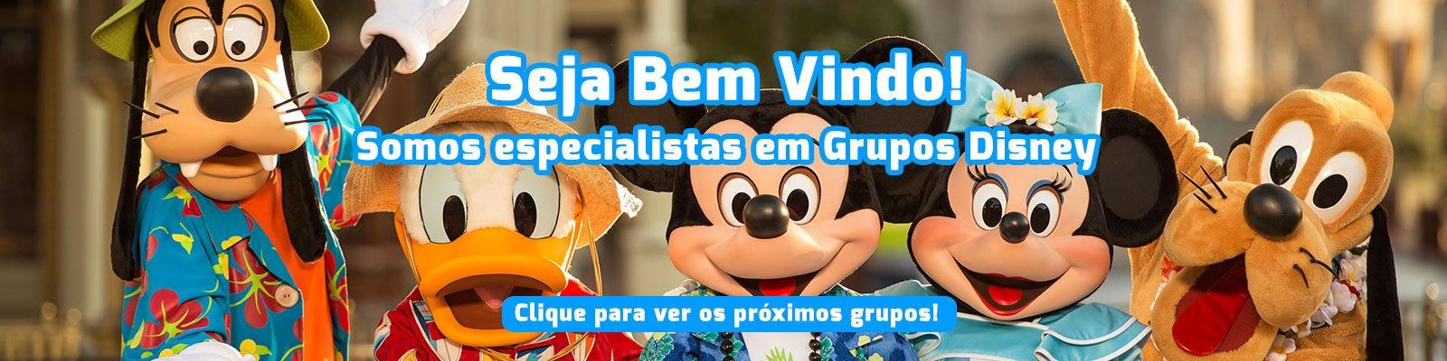 Viagens para Disney 1