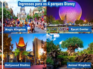 O Walt Disney World, o complexo Disney na Flórida 8