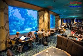 Os Restaurantes do Future World, no Epcot 8