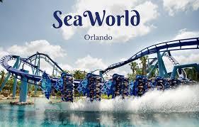 Conheça o incrível parque Sea World em Orlando 28