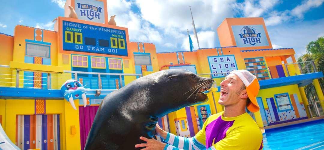 Sea of Delight uma área dedicada aos leões marinhos no Sea World 18