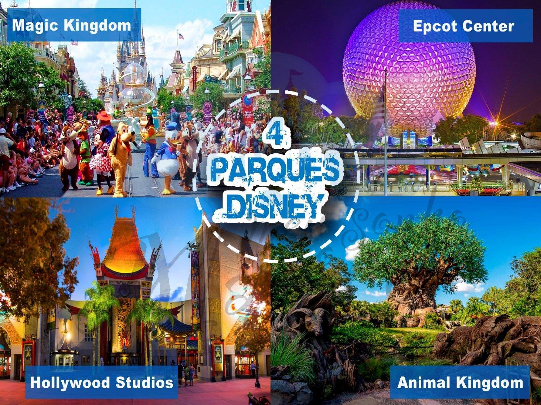 Grupo CFA - Disney Novembro 2021 6