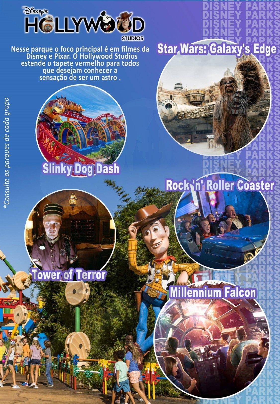 Grupo Family Inverno - Disney Janeiro 2022 3