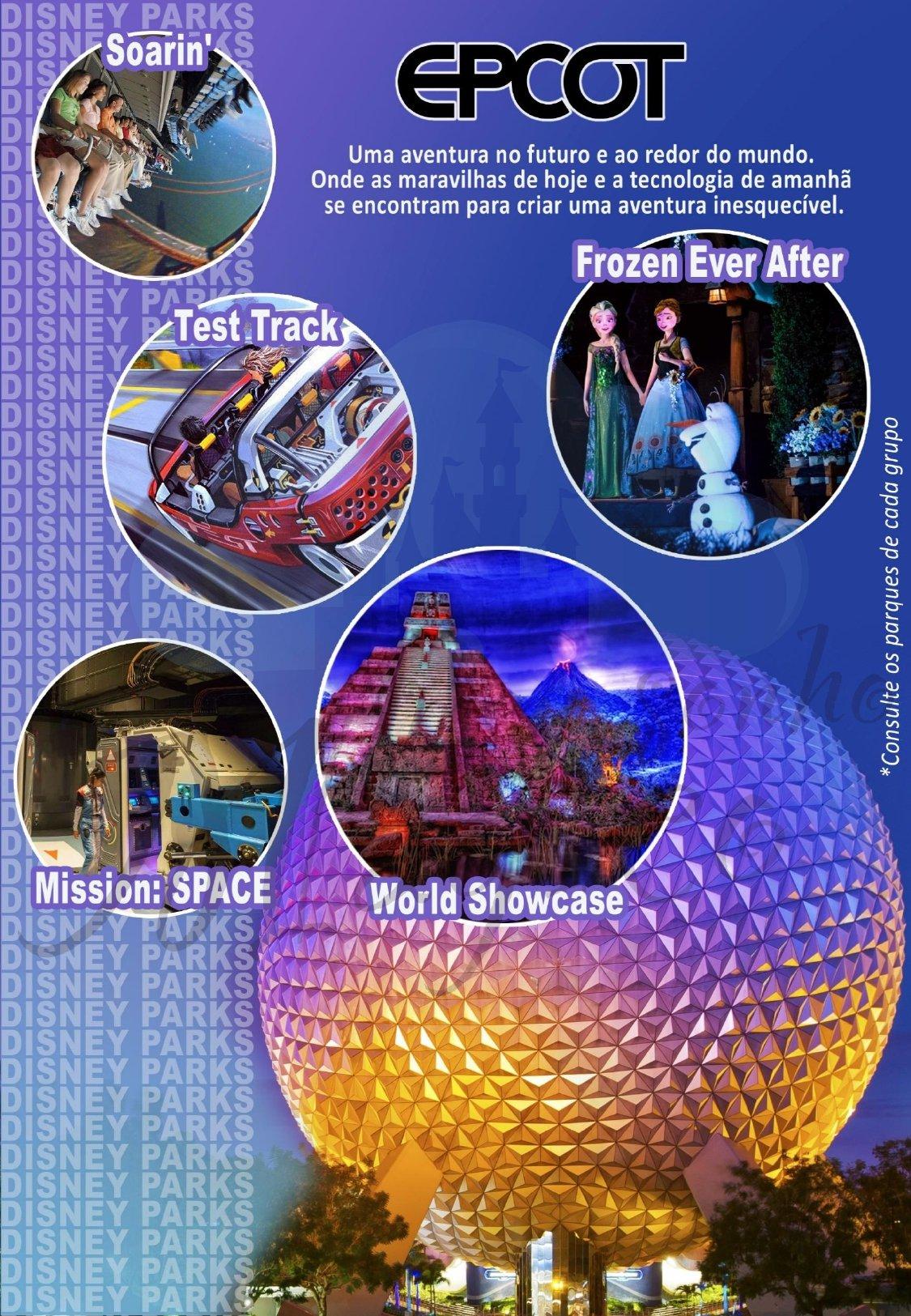 Grupo Family Inverno - Disney Janeiro 2022 9