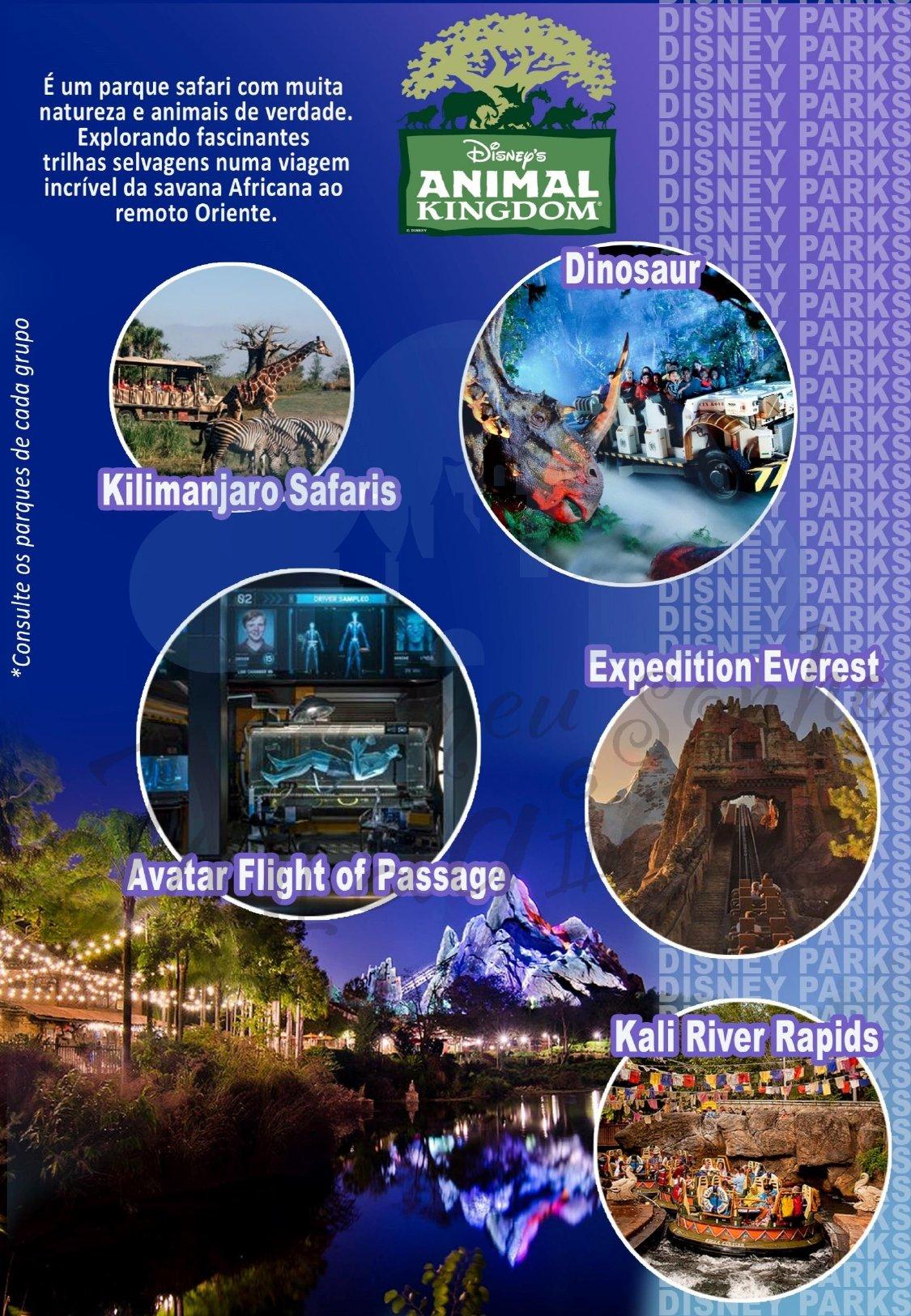 Grupo Family Inverno - Disney Janeiro 2022 4