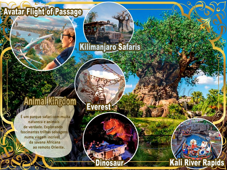 Grupo Sonho de Princesa - Disney Orlando Julho 2022 23