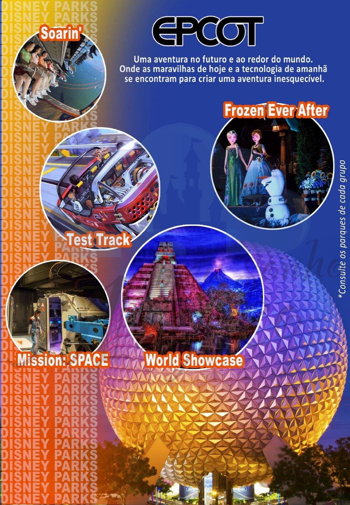 Grupo Teen Inverno - Disney Janeiro 2022 9