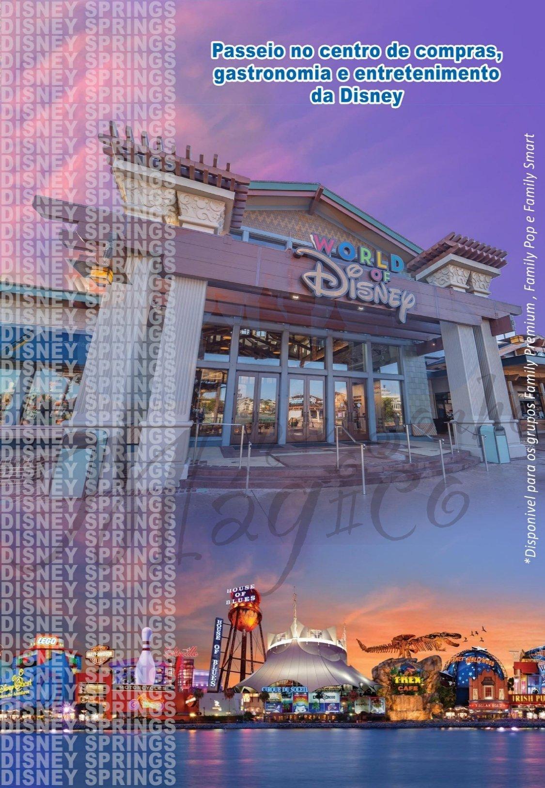 Grupo Family Verão - Disney Julho 2022 10
