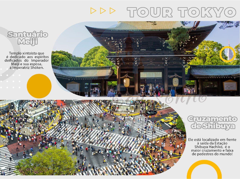 Planomagic Tokyo 6