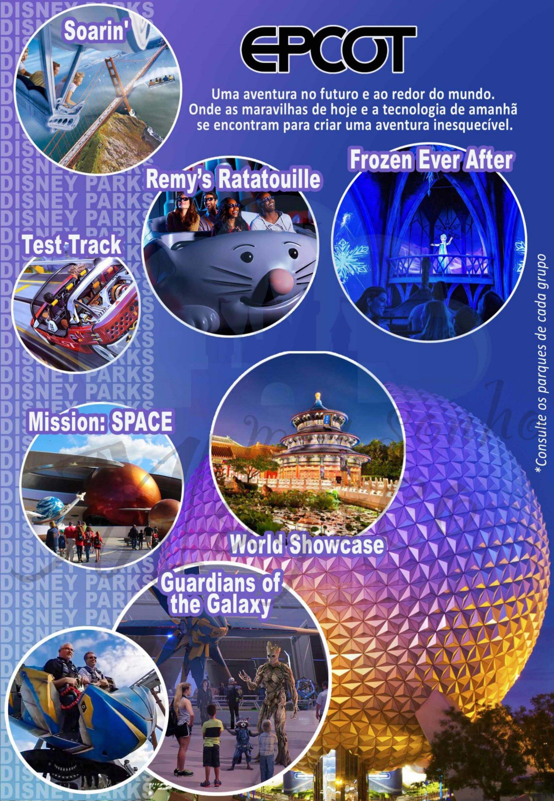 Grupo Family Natal - Disney Novembro 2023 9